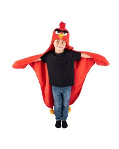 a young boy displays his Angry Birds Red costume blanket